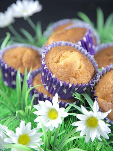 muffin quetsches