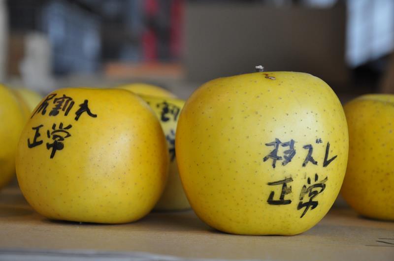 pommes japonaises