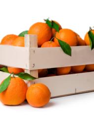 Oranges de Sicile
